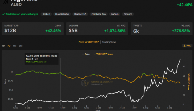 presearch-frontier-and-algorand-book-double-digit-gains-as-altcoins-soar-eb9ff06
