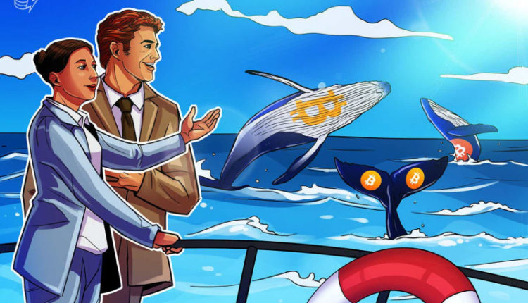 price-spike-are-whales-front-running-the-approval-of-a-bitcoin-futures-etf-03bacb4